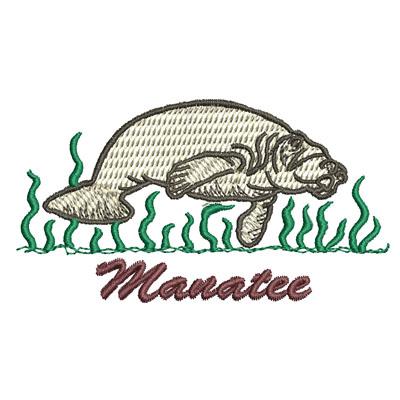 Manatee001
